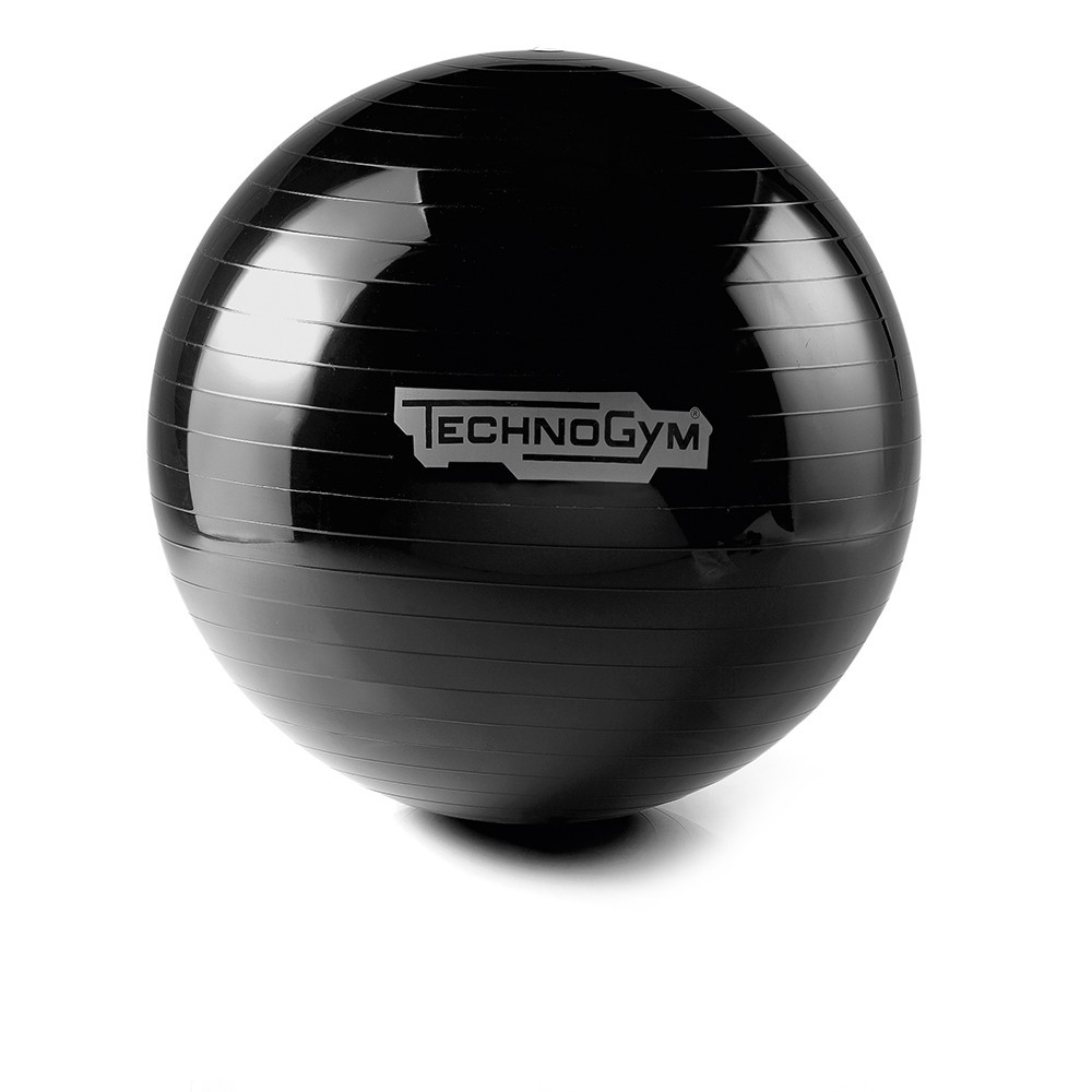 WELLNESS BALL™ TRAINING Technogym