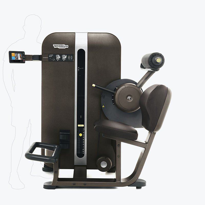 Low Back Extension Machine Artis Lower Bac...