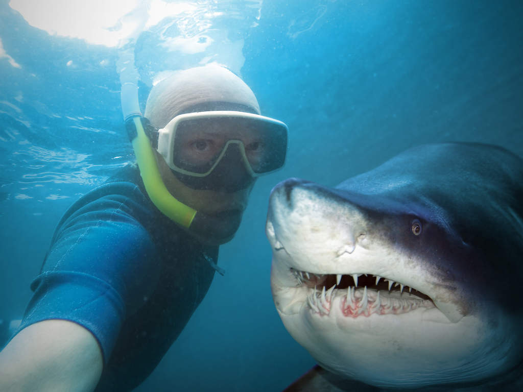 Underwater selfie with friend. Scuba diver and shark in deep sea.