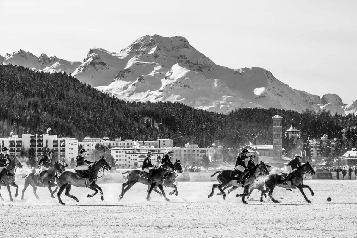 playing polo st.moritz