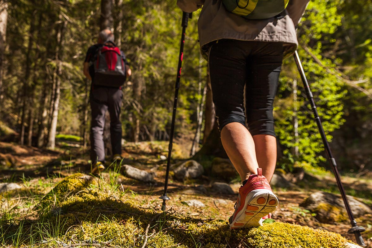 Nordic Walking How And Where To Practice This Sport Filled With Benefits Technogym